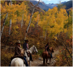 Horseback ride with guests during fall